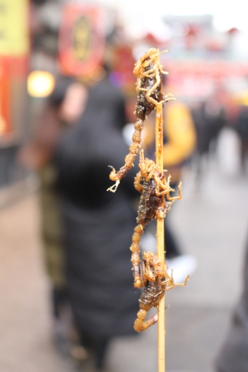 Our lunch. Scorpions on a stick. Delicious.